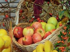 Erntedank - Herbstpracht